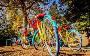 Google Campus - Silicon Valley