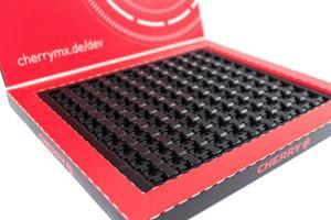 Cherry MX Developer-Kit
