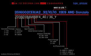 AMD Gonzalo APU