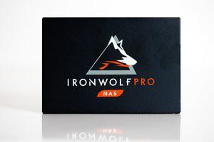 Seagate IronWolf Pro 125
