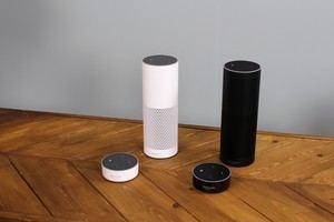 Amazon bietet Echo und Echo Dot in Schwarz und Weiß an, abgesehen vom Lautsprecher gibt es keine Unterschiede