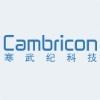 cambricon.jpg