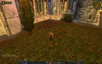 Ambient_WorldofWarcraft_off_rs